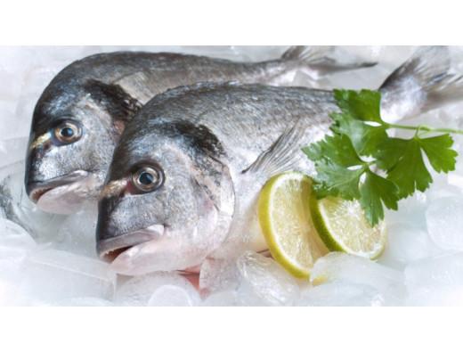 Как охлаждать и замораживать рыбу
